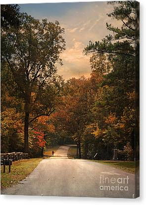 Cycling Season Canvas Print by Jai Johnson