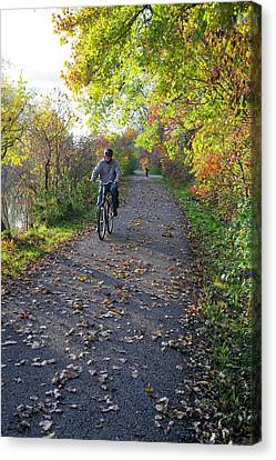 Cyclist In Parkland In Autumn Canvas Print