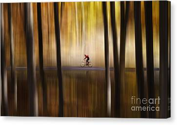 Cyclist In The Forest Canvas Print