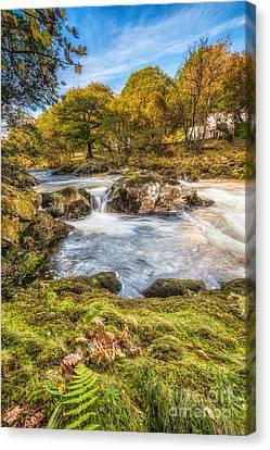 Cyfyng Falls Canvas Print by Adrian Evans