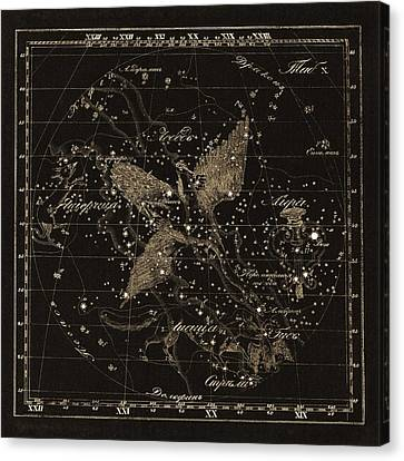 Cygnus Constellations, 1829 Canvas Print by Science Photo Library