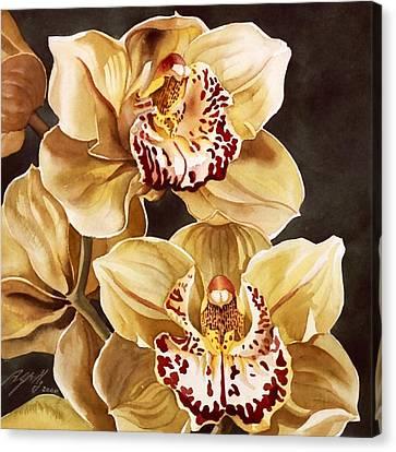 Cymbidium Orchids Canvas Print by Alfred Ng