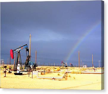 Cymric Field Rainbow Canvas Print by Lanita Williams