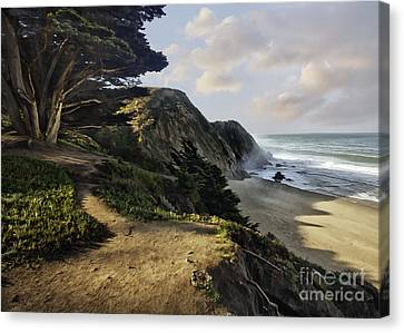 Cypress Beach Canvas Print