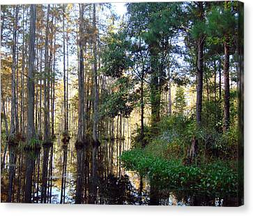 Canvas Print featuring the photograph Cypress Gardens 2 by Ellen Tully