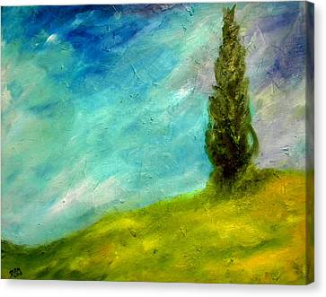 Cypress In Tuscany  Canvas Print by David McGhee