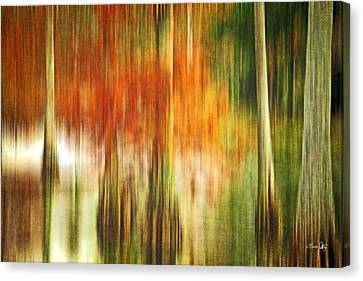 Cypress Pond Canvas Print by Scott Pellegrin