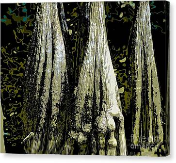 Cypress Three Canvas Print by Sally Simon