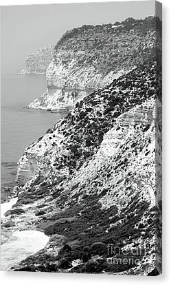 Cyprus View - Black And White Canvas Print