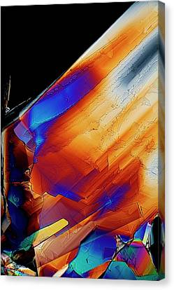 Cysteine Crystals Canvas Print by Antonio Romero