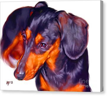 Dachshund Art Canvas Print by Iain McDonald