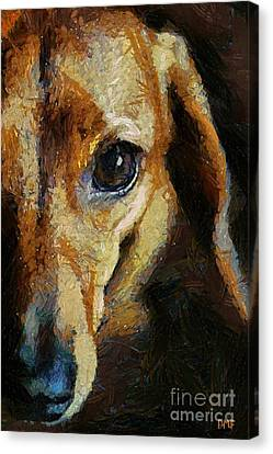 Dachshund Chocolate Canvas Print