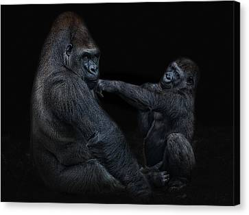 Daddy Is A Left Hook Like This Canvas Print by Joachim G Pinkawa