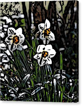 Canvas Print featuring the digital art Daffodil by David Lane