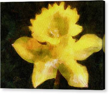 Canvas Print featuring the painting Daffodil by Greg Collins