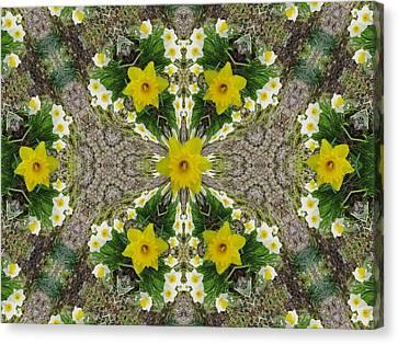 Daffodil Kaleidoscope Canvas Print by Mike Breau