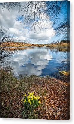 Hidden Falls Canvas Print - Daffodil Lake by Adrian Evans