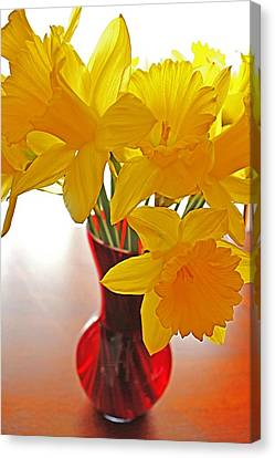 Canvas Print featuring the photograph Daffodils In Red Vase by Diane Alexander