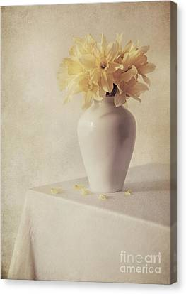 Indoor Still Life Canvas Print - Daffodils In White Flower Pot On The Table by Jaroslaw Blaminsky