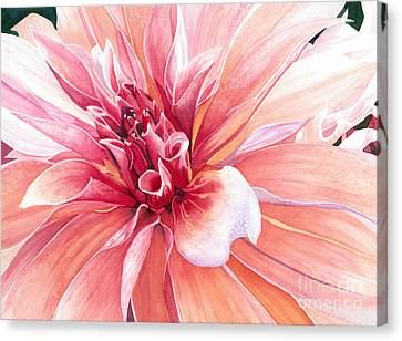 Dahlia Dazzler Canvas Print by Barbara Jewell