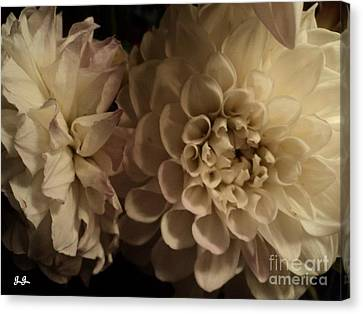 Canvas Print featuring the photograph Dahlia Duo by Geri Glavis
