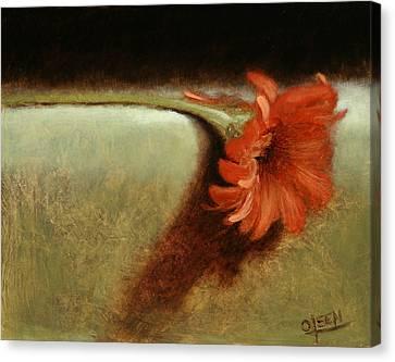 Dahlia Flower Canvas Print by Christy Olsen