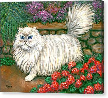 Dainty The Cat Canvas Print by Linda Mears