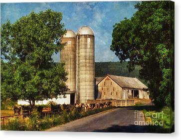 Dairy Farming Canvas Print by Lois Bryan