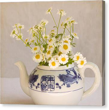 Canvas Print featuring the photograph Daisies In A Teapot by Peggy Collins