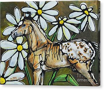 Daisies On My Britches Canvas Print by Jonelle T McCoy