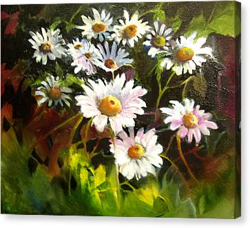 Daisies Canvas Print by Robert Carver
