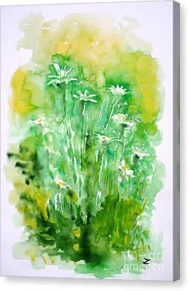 Daisies Canvas Print by Zaira Dzhaubaeva