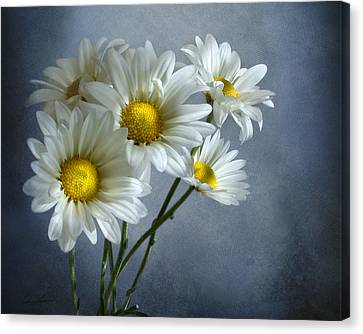 Canvas Print featuring the photograph Daisy Bouquet by Ann Lauwers