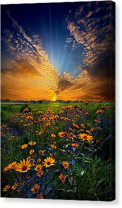 Daisy Dream Canvas Print