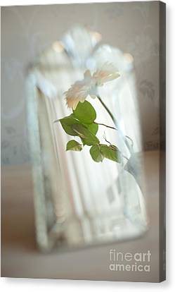 Canvas Print featuring the photograph Daisy In The Mirror by Aiolos Greek Collections