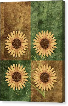 Daisy Quatro V12c03 Canvas Print by Variance Collections