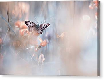 Soft Pastel Canvas Print - Dakinis Are Watching Over Us by Fabien Bravin