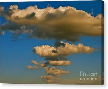 Canvas Print featuring the photograph Dali-like by Joy Hardee