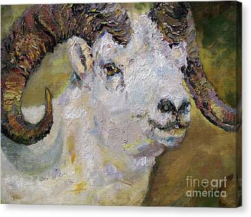 Mountain Goat Canvas Print - Dall Sheep Ram by Ginette Callaway
