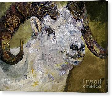 Mountain Goat Canvas Print - Dall Sheep Ram Wildlife Portrait by Ginette Callaway