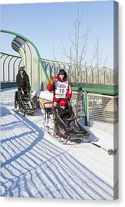 Dallas Seavey Iditarod Champ Canvas Print by Tim Grams