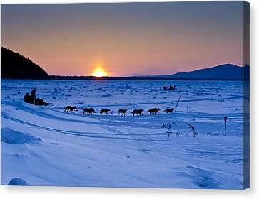 Dallas Seavey On The Yukon River Canvas Print by Jeff Schultz