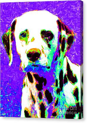 Dalmation Dog 20130125v4 Canvas Print by Wingsdomain Art and Photography