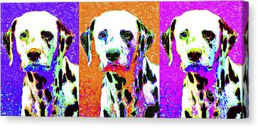 Dalmation Dog Three 20130125 Canvas Print by Wingsdomain Art and Photography