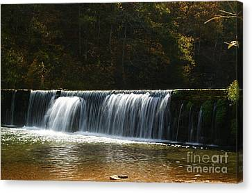Canvas Print featuring the photograph Dam Falls At Rockbridge by Julie Clements