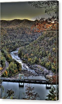 Canvas Print featuring the photograph Dam In The Forest by Jonny D