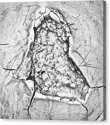 Damaged Metal Canvas Print by Tom Gowanlock