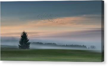 Dance In The Clouds Canvas Print