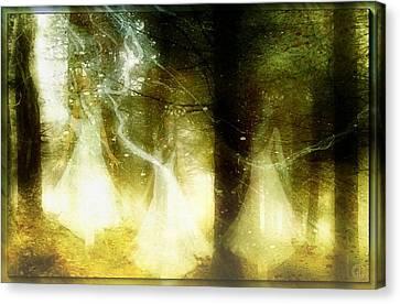 Dance Of The Fairies Canvas Print by Gun Legler