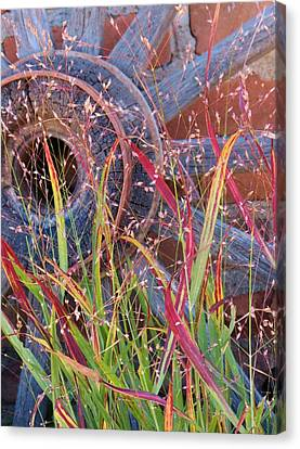 Dance Of The Wild Grass Canvas Print by Feva  Fotos